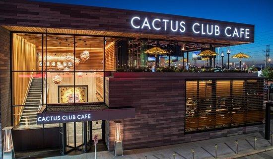 cactus club cafe store